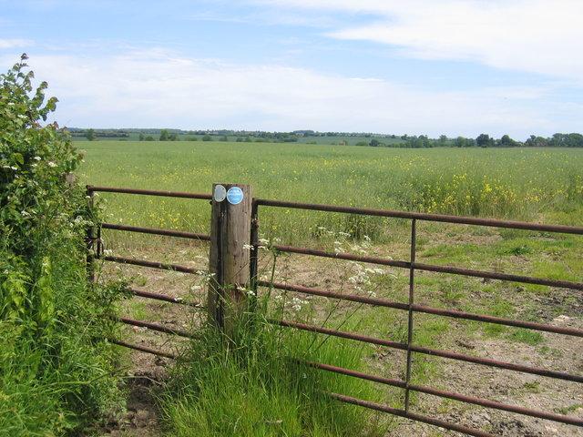 Bridleway to Pillerton Hersey