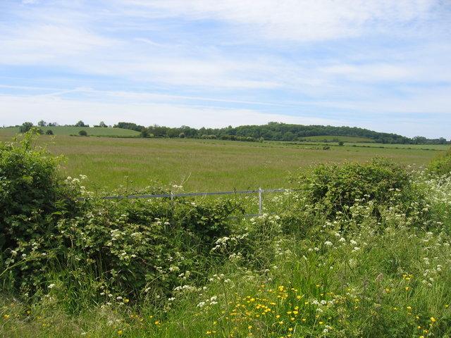 Farmland at Home Farm