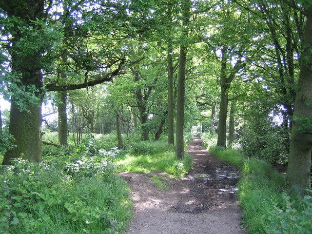 Woodside: Green Street