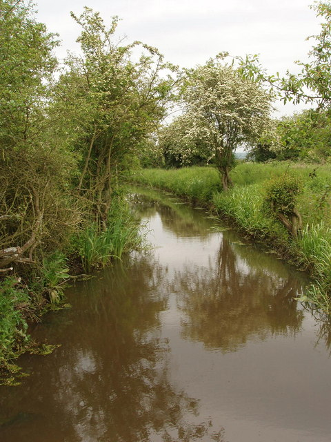 Drainage ditch on Otmoor