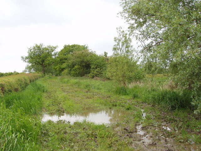 Wet bridleway on Otmoor