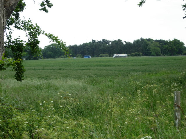 Farmland north of Thetford