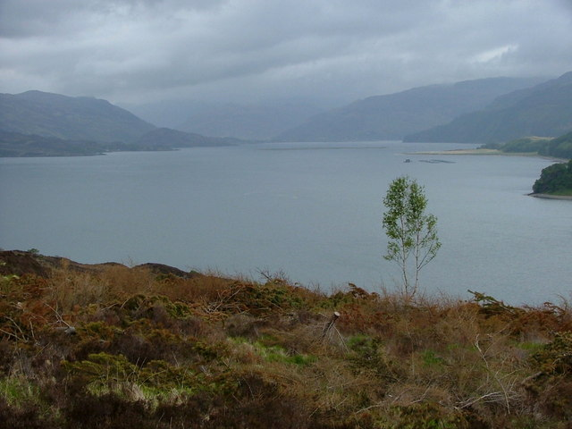 View down Kyle  Rhea from the Forestry Road in the direction of  Loch Alsh