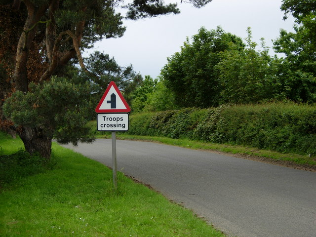 Road past Wretham Camp