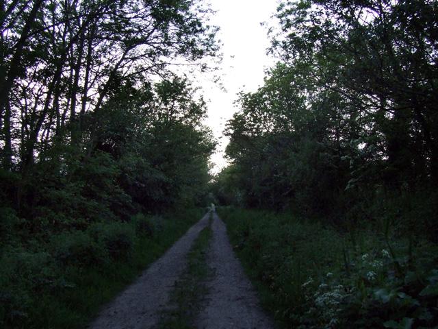 Narrow lane at Twll y Clawdd
