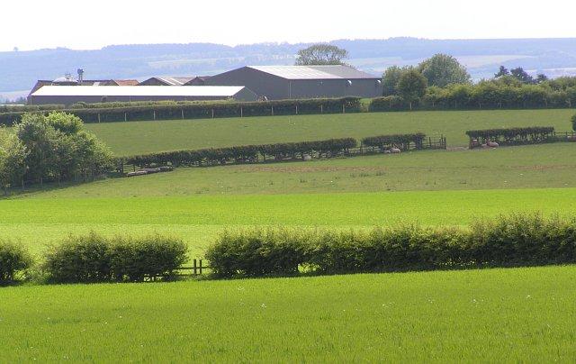 Farmland NW of Newfields Barn