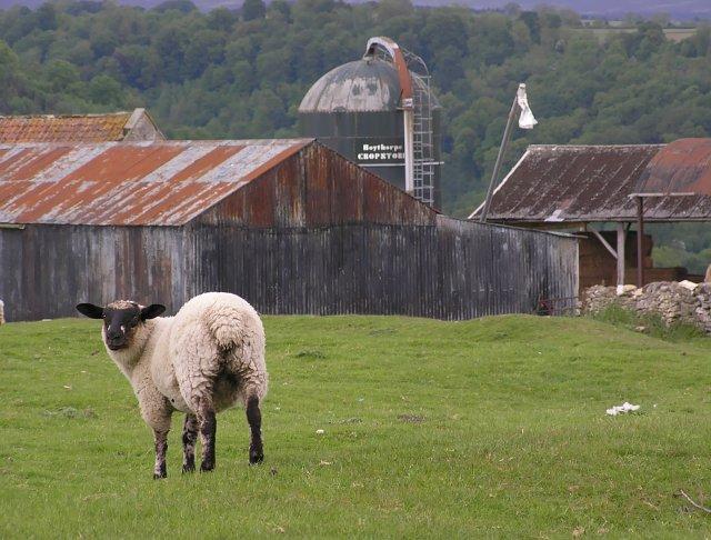 Farm sheds at Skiplam Grange