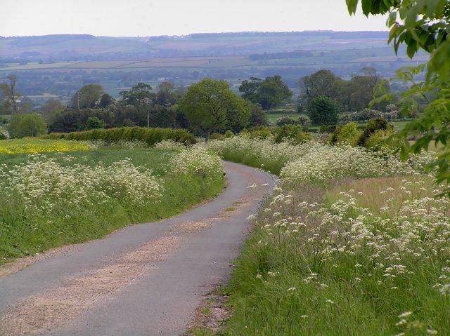 Skiplam Road North of Ewe Cote Farm