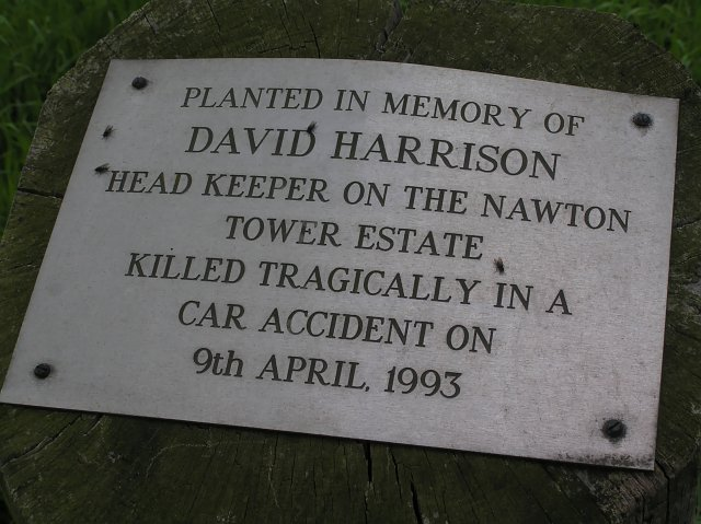 Plaque near young Trees