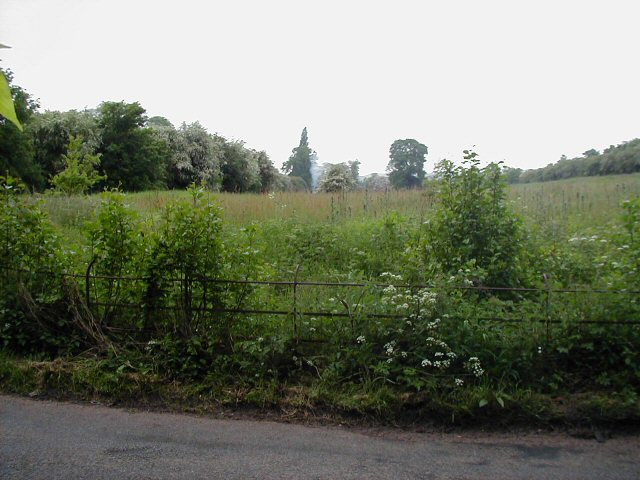 Field to the north of Burcot Lane