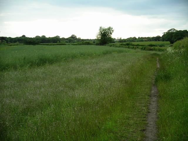 Footpath, Nuthall