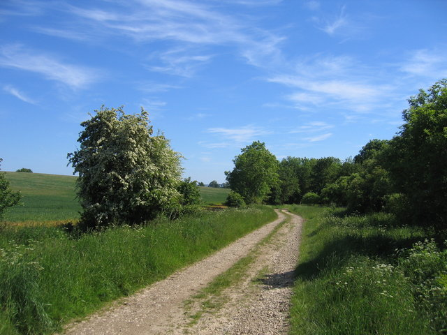 Bridleway and track to Ettington Park
