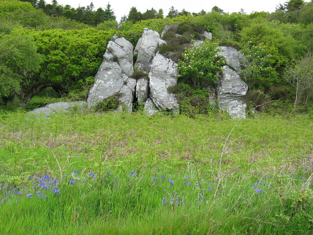Rock formation and growth by the roadside south of Skipness