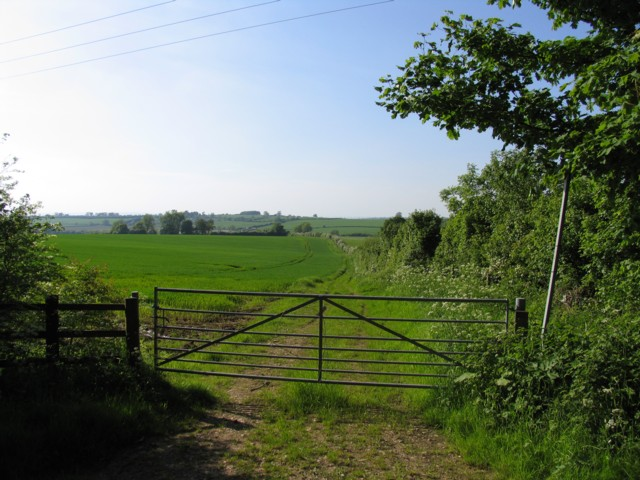 Footpath to Billesdon