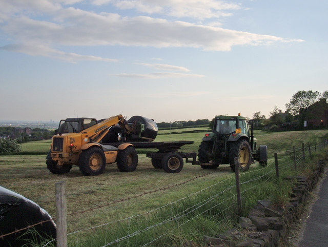 Hay Making, High Crompton