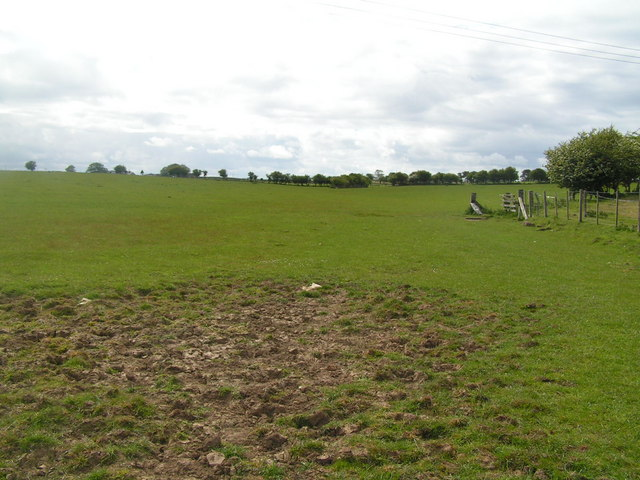 Field between Southfields & Annstead farm, South of North Sunderland