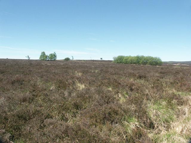Staffordshire Moorlands