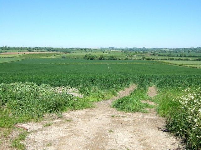 Fields opposite Groveway Farm