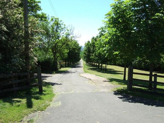 Lower Burston Farm Avenue
