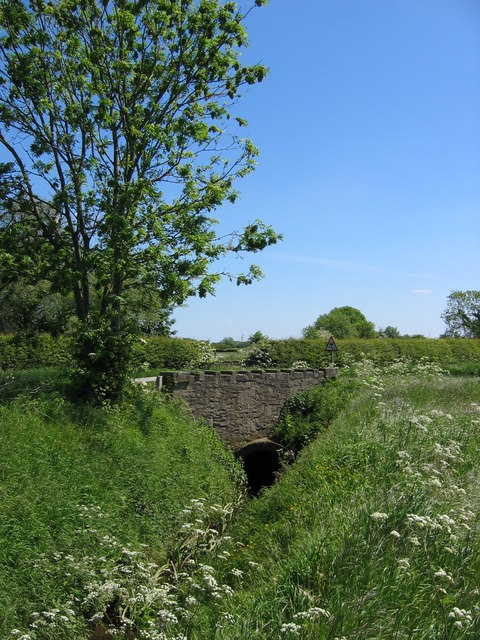 Bridge Over Whitecarr Beck
