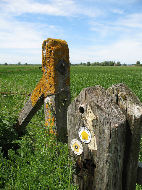 Marker and Fence Posts