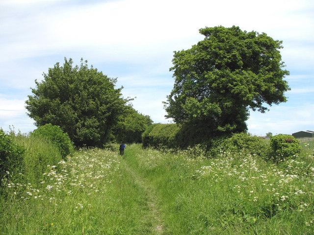 Bridleway across New Farm