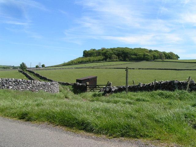 Kemp's Hill