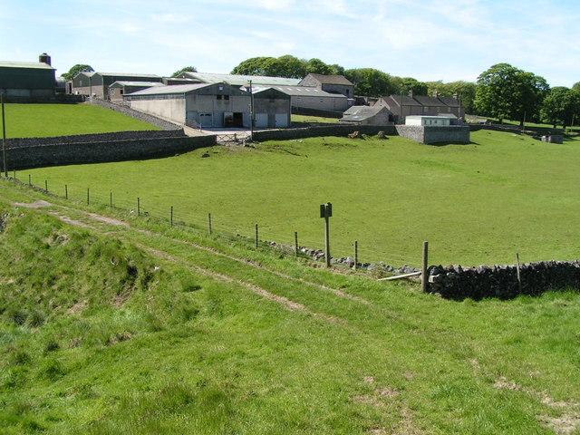 Damside Farm