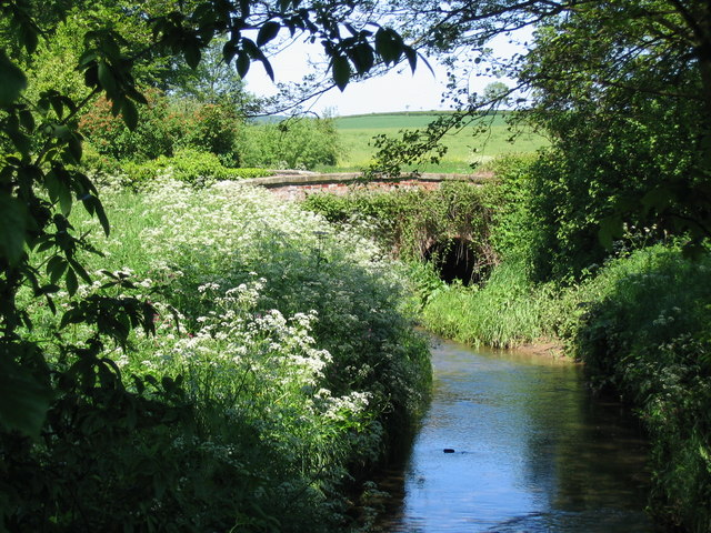 Bridge East of Stillington