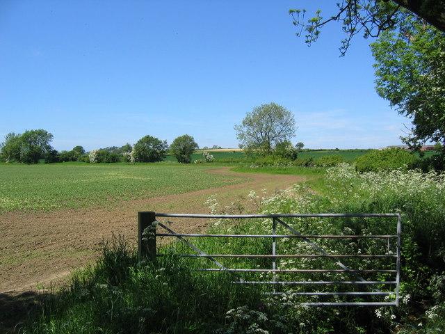 Farmland at SE583690
