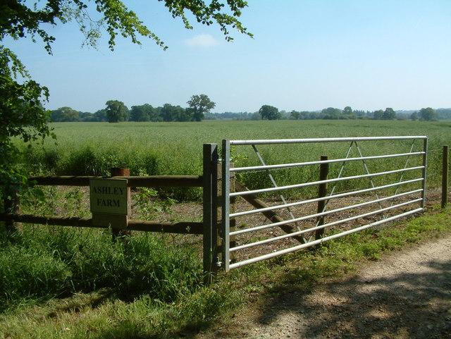 Ashley Farm, St Leonards and St Ives