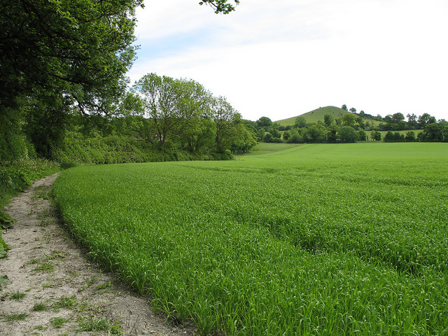 Footpath and Beacon Hill