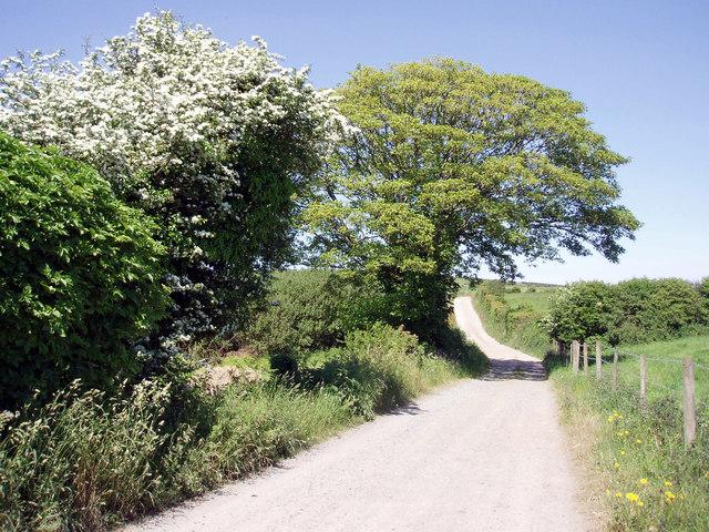 Lane to Bellowal