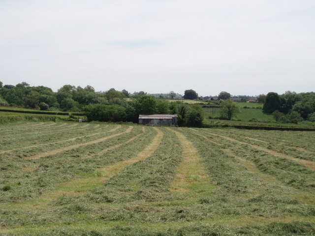 Recently mown field