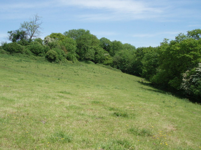 Field on the north west side of Ham wood