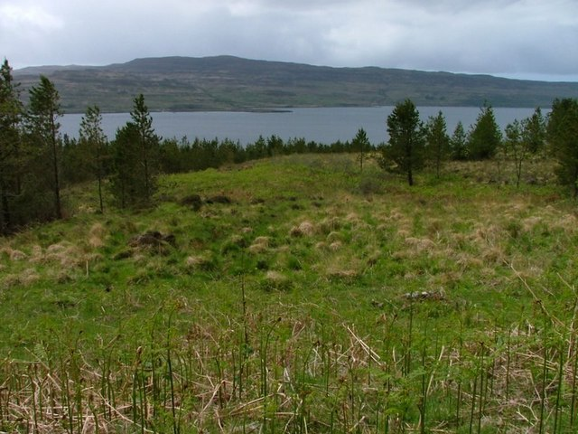 Forestry Clearing, Overlooking Slochd Bay