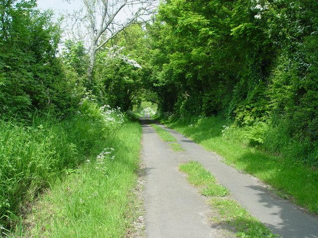 A Green Lane