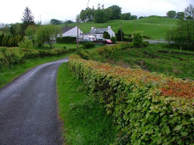 Rear of Cottages at Duncan's Rig