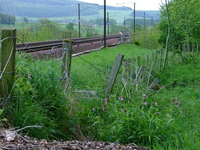 West Coast Mainline Near Cogrie Farm