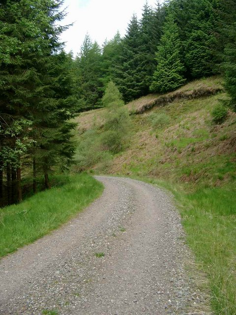 Forestry track to Leathan Dhail