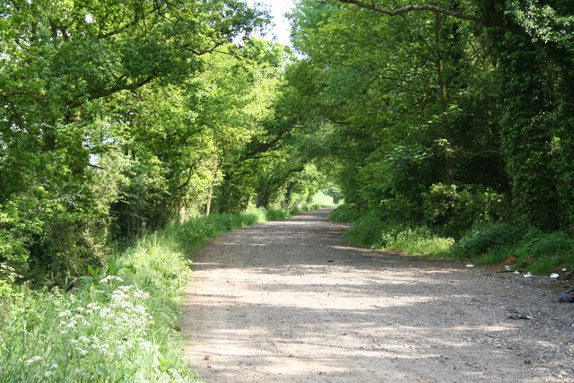 Lane to Belle Vue farm