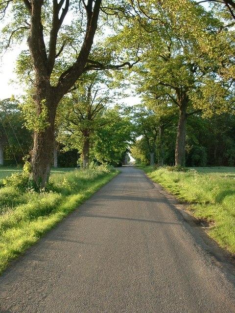 Long Road, Tydd Gote