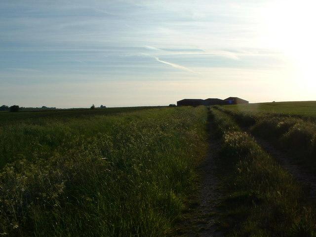 Farmland, West Norfolk.