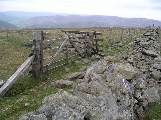 Wall, gates, and fences, Dollar Law.