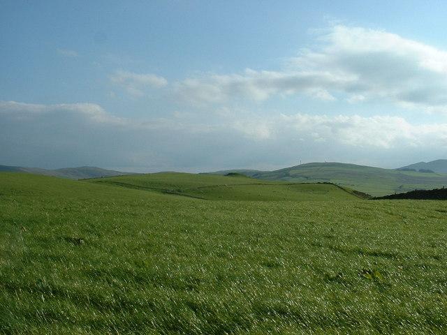 Farmland near Cerrigydrudion
