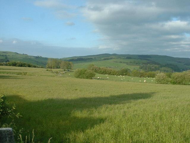 Farmland near  Glyn-nannau