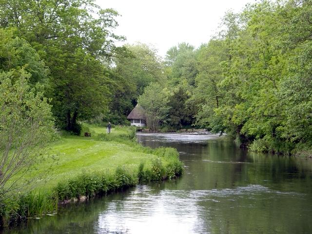 River Test at Bossington