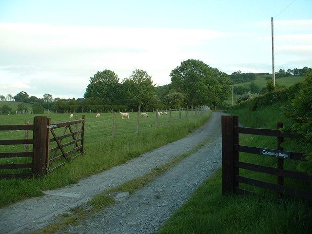Lane to Ty-nant-y-llwyn