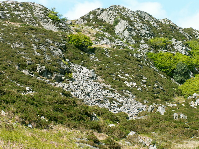 Hillside above Gorllwyn
