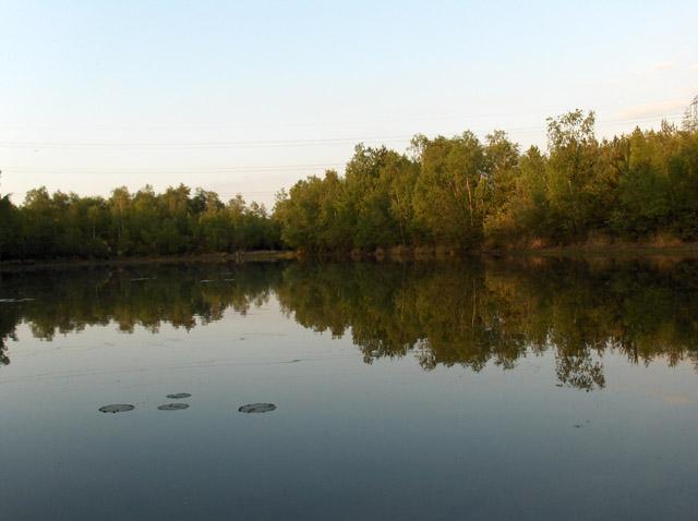 Lake on Warren Heath